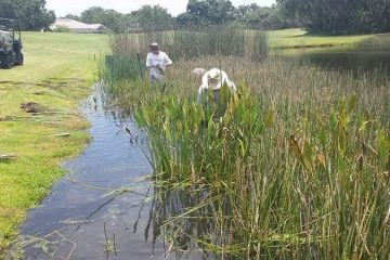 Managing Aquatic Vegetation